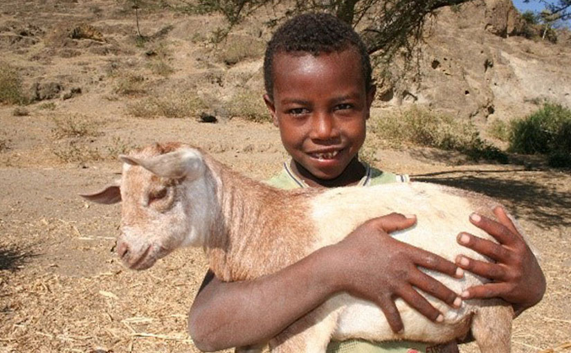boy with a goat