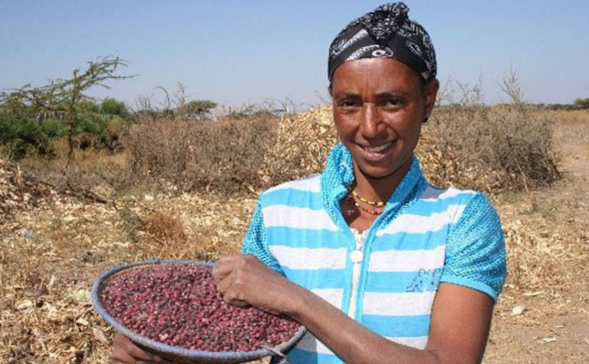 Ethiopian Woman with Seeds